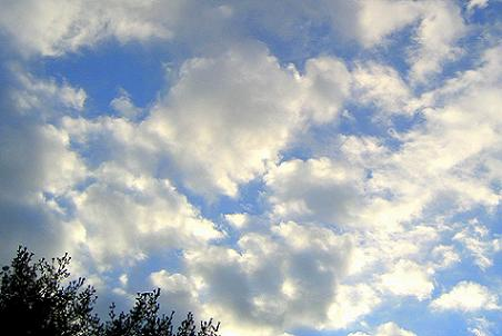 Clouds-and-sky-and-tree