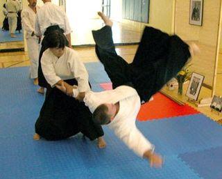 Aikido throw2